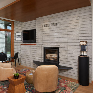 Superieur 75 Beautiful Midcentury Modern Family Room With A Wood Stove ...