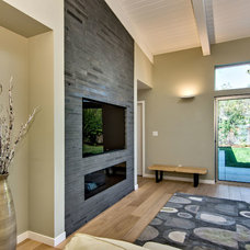 Modern Family Room by Bill Fry Construction - Wm. H. Fry Const. Co.