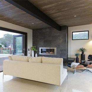 ロサンゼルスの中サイズのモダンスタイルのおしゃれな独立型ファミリールーム (白い壁、リノリウムの床、横長型暖炉、金属の暖炉まわり、テレビなし) の写真