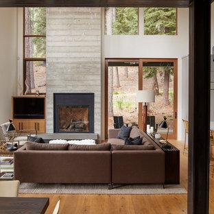 サンフランシスコの中くらいのコンテンポラリースタイルのおしゃれなオープンリビング (ベージュの壁、無垢フローリング、標準型暖炉、コンクリートの暖炉まわり、埋込式メディアウォール、茶色い床) の写真