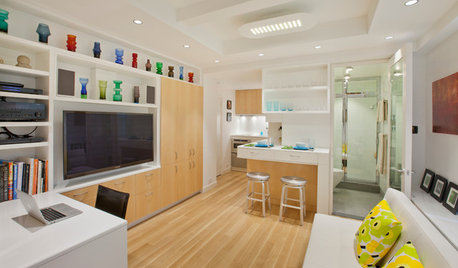 Houzz Tour: A 340-Sq-Ft Home Fits in Plenty of Comfort and Style