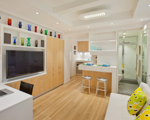New York Studio Apartment Design Houzz