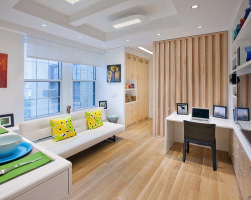 Open Concept Apartment Ideas | Houzz