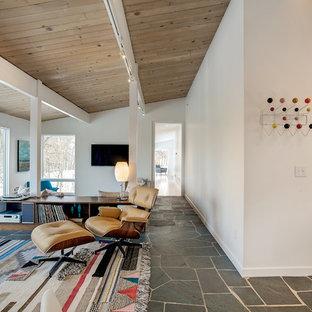 Immagine di un soggiorno minimalista di medie dimensioni e aperto con pareti bianche, pavimento in ardesia, TV a parete, nessun camino e pavimento grigio