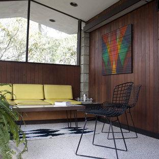 フィラデルフィアのミッドセンチュリースタイルのおしゃれな独立型ファミリールーム (茶色い壁、カーペット敷き) の写真