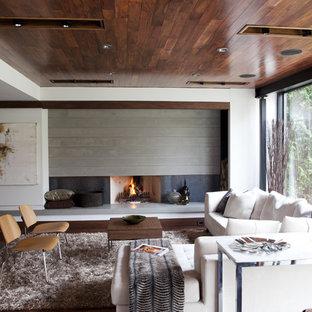 トロントのコンテンポラリースタイルのおしゃれなファミリールーム (白い壁、濃色無垢フローリング、標準型暖炉、金属の暖炉まわり) の写真