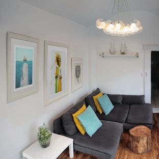 Modelo de sala de estar cerrada, minimalista, pequeña, con paredes blancas, suelo de madera en tonos medios, chimenea tradicional y marco de chimenea de metal