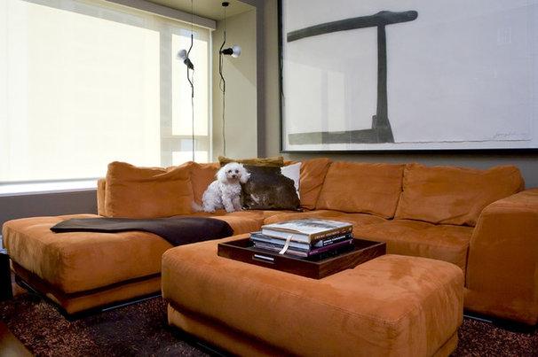 Modern Family Room by Cynthia Lynn Photography