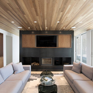 Inspiration for a scandinavian family room remodel in New York with white walls, a ribbon fireplace and a wall-mounted tv