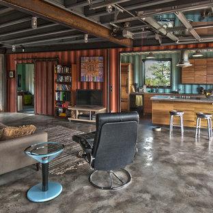 デンバーの中サイズのインダストリアルスタイルのおしゃれなファミリールーム (赤い壁、コンクリートの床、据え置き型テレビ) の写真