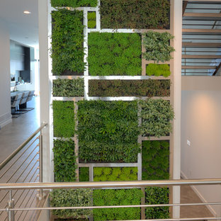 Private Mt. Adams Home Living Wall Installation