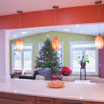 Rockville Kitchen Remodel and Family Room Addition