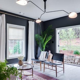 Ceiling Light Fixture Family Room Ideas & Photos | Houzz
