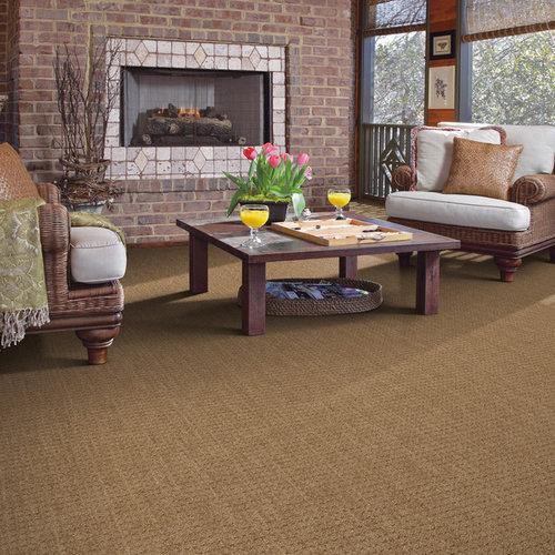 Shaw Floors Carpet Reviews