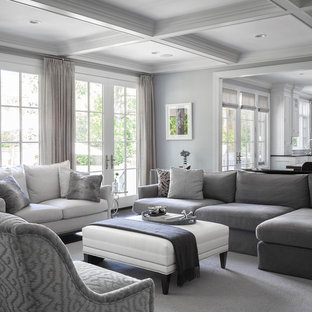Example of a transitional carpeted family room design in New York with gray walls