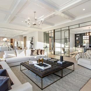 ニューヨークの大きいコンテンポラリースタイルのおしゃれなファミリールーム (白い壁、淡色無垢フローリング、ベージュの床、標準型暖炉、石材の暖炉まわり) の写真