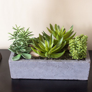 Succulent Planter on Family Room Hall Table