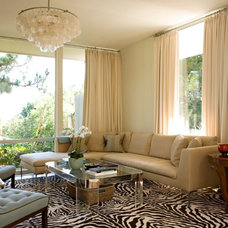 Transitional Family Room by Elizabeth Dinkel