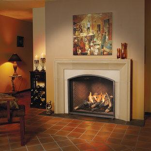 TC36 Arch gas fireplace