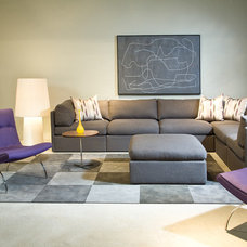 Midcentury Family Room by Thayer Coggin