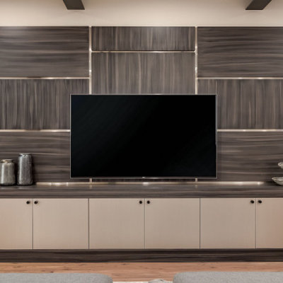 Inspiration for a modern family room remodel in Salt Lake City with a media wall