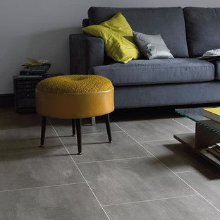 Family room - mid-sized modern open concept porcelain floor and gray floor family room idea in New York with gray walls