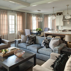 Transitional Family Room by Lewis Giannoulias (LG Interiors)