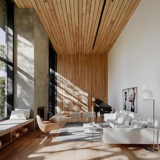 ロサンゼルスのモダンスタイルのおしゃれなファミリールーム (ミュージックルーム、白い壁、淡色無垢フローリング、標準型暖炉、コンクリートの暖炉まわり) の写真