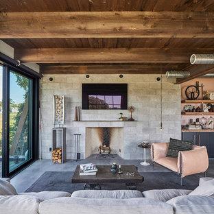 Esempio di un soggiorno industriale aperto con pareti grigie, pavimento in cemento, camino classico, cornice del camino in pietra, TV a parete e pavimento grigio
