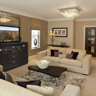 Retractable Tv Cabinet Clear All Family Room Traditional Idea In Miami