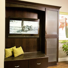 Contemporary Family Room by Ideal Cabinetry Design