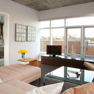 Family room - contemporary enclosed carpeted family room idea in DC Metro with a tv stand