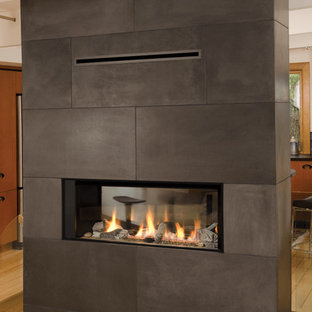Valor Linear Series Fireplaces - L1 See Through