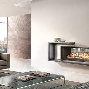 WS54 Indoor-Outdoor See-Thru gas fireplace