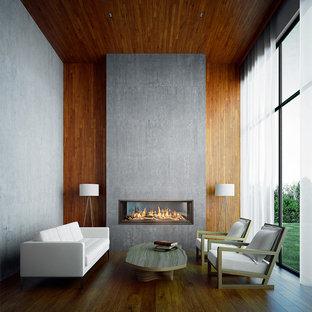 WS54 See-Thru gas fireplace