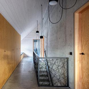 Свежая идея для дизайна: огромный коридор в скандинавском стиле с серыми стенами, бетонным полом, серым полом, деревянным потолком и деревянными стенами - отличное фото интерьера