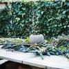 Højtid i haven: 24 tip til nem og enkel udendørs pynt i juletiden