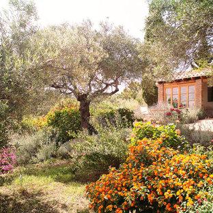 Выдающиеся фото от архитекторов и дизайнеров интерьера: солнечный огород на участке среднего размера на переднем дворе в средиземноморском стиле с освещенностью