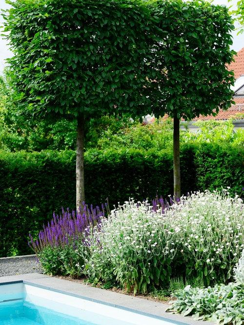 Fotos de jardines dise os de jardines modernos en alemania for Jardines modernos fotos