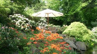erhöhter Sitzplatz im Wassergarten