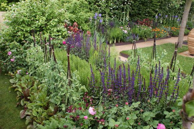 Modern Garten by Zinsser Gärten