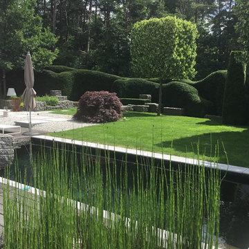 Gartenpflege Moderner Garten