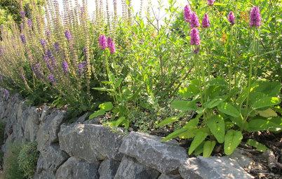 Stein auf Stein: Mit Trockenmauern neue Akzente setzen