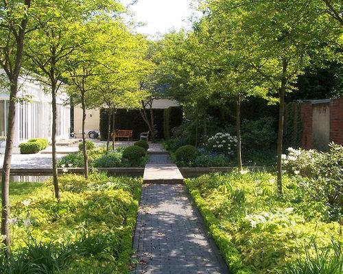 Geometrischer, Großer, Halbschattiger Moderner Garten Im Sommer, Hinter Dem  Haus Mit Gartenweg Und