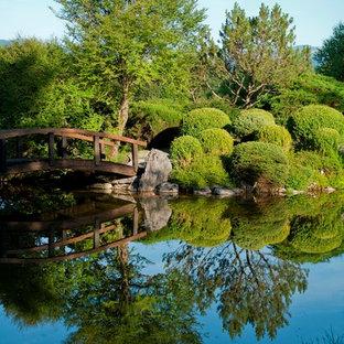Großer, Halbschattiger Asiatischer Garten im Sommer mit Teich in München