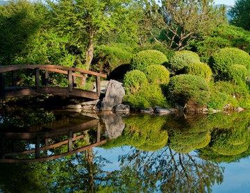 Gartenteich mit japanischem Flair