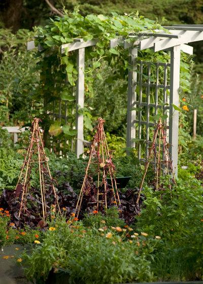 Landhausstil Garten by The New York Botanical Garden