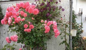 Impressionen Hausgarten