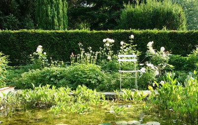 Garten Im September Was Jetzt Zu Tun Ist