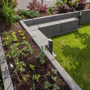 Moderner Garten mit Betonplatten